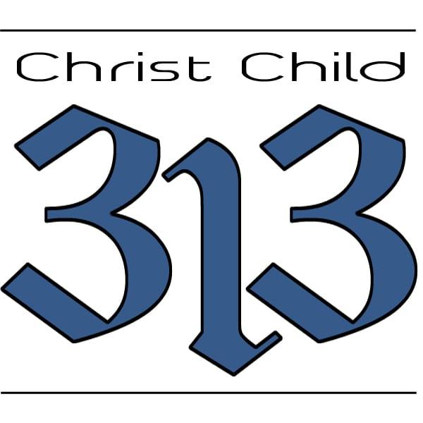 cc 313 v 2